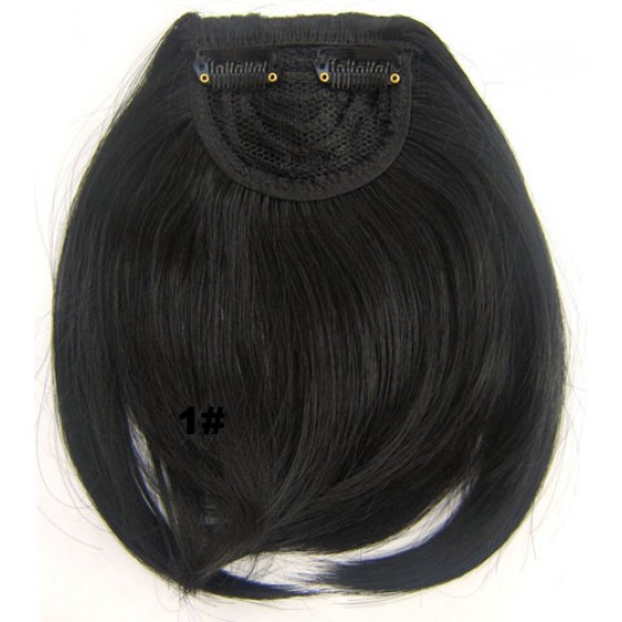 Pony hairextension clip in zwart - 1#