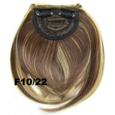 Pony hairextension clip in bruin / blond - F10/22