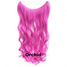 Wire hair wavy Orchid