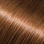 6# Medium Brown